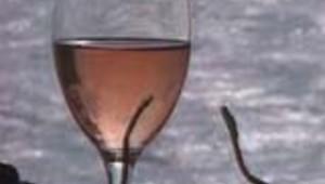 verredepicrate alcool consommation economie