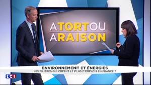 """Environnement et énergie, """"les secteurs qui créent le plus d'emplois"""" : Royal a-t-elle raison ou tort ?"""