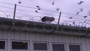 Le centre de rétention de Vincennes/Image d'archives