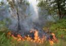 Illustration. Un feu de forêt à Saint-Jean d'Illac (Gironde) en juillet 2015.