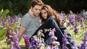 Twilight - Chapitre 5 Revelation 2e partie de Bill Condon