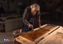 """Artisans de Franche-Comté : l'art du bois de la """"Venise comtoise"""""""