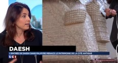 """Palmyre : """"Le patrimoine est un enjeu de la guerre"""""""