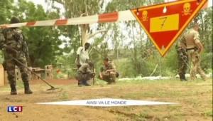Ayrault et Steinmeier ensemble au Sahel : une occasion en or pour l'Allemand de renforcer son influence