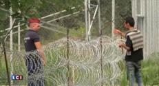 Immigration clandestine : le mur de barbelés n'arrête pas les migrants en Hongrie