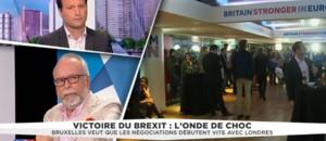 """Brexit: Wallerand de Saint-Just pointe """"des erreurs considérables dans la construction de l'Europe"""""""