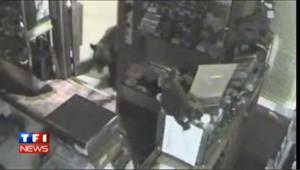 VIDEO : un ours vole 100 dollars de bonbons dans un magasin