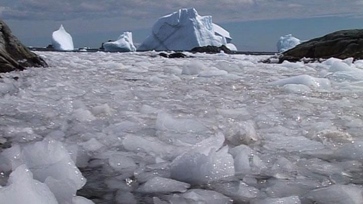 Antarctique : des lacs se déplacent d'un mètre par jour