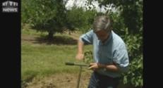 Canicule, des agriculteurs inventent un système d'auto-régulation d'eau