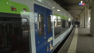 Le 20 heures du 10 juin 2014 : Pourquoi les salari�de la SNCF font-ils gr� ? - 238.4941982421875