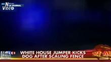 Un homme réussi a passé par-dessus la grille de la Maison Blanche