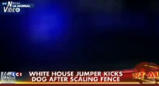Un homme réussit à passer par-dessus la grille de la Maison Blanche