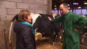 Finistère : un vétérinaire lance un appel à l'aide face à la détresse des agriculteurs