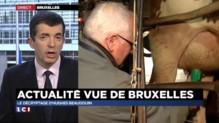 Hugues Beaudoin : l'actualité depuis Bruxelles