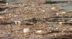Jeux Olympiques au Brésil : l'eau des épreuves nautiques polluée par les eaux usées