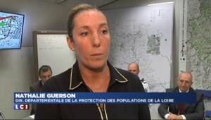 Cas de rage dans la Loire : six hommes recherchés, un numéro vert mis en place