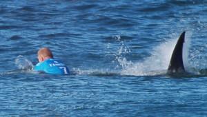 L'attaque de Mick Fanning sur la plage en Afrique du sud