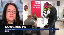 """Congrès du PS : """"Le PS n'est plus un parti de militants, c'est une entreprise"""""""