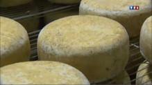 Les fromages d'appellation d&#03