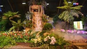 Le 13 heures du 26 mars 2015 : Une battle de fleurs à l'exposition Florissimo - 2316.839