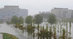 Montpellier sous la pluie, comme ici au parc Georges Charpak, lundi 29 septembre 2014.