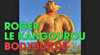 Roger, le kangourou australien bodybuildé qui fait le buzz
