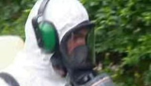 Chikungunya Réunion démoustication