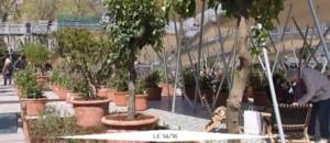 """""""Jardins d'Orient"""", l'exposition événement de l'Institut du Monde Arabe"""