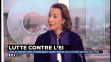Hommage national aux victimes, opérations militaires en Syrie, l'analyse Caroline Galactéros
