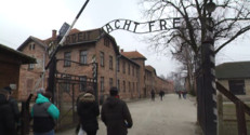 Le 13 heures du 25 janvier 2015 : Auschwitz-Birkenau, un lieu de mémoire - 417.214