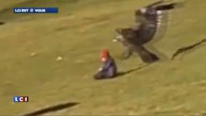 Enfant enlevé par un aigle à Montréal : la vidéo est un fake