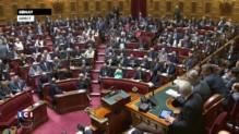 Présidence du Sénat : Nathalie Goulet, qui n'était pas candidate, obtient une voix