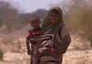 Sécheresse dans la Corne de l'Afrique : dramatiques histoires