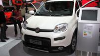 Fiat Panda 4x4 Mondial Auto 2012
