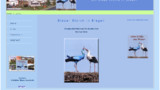 La cigogne bleue fait des bébés blancs