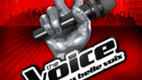 The Voice : les cinq plus beaux moments de la saison 1