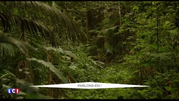 La loi de la jungle, la comédie complètement déjantée à découvrir cette semaine