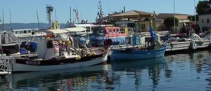 Découverte des îles françaises (2/5): Porquerolles, au large de Toulon