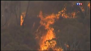 Le 13 heures du 20 octobre 2013 : Spectaculaires incendies en Australie - 443.54300000000006