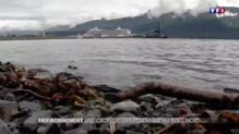 Croisière dans l'Arctique : rêve d'une vie pour les plaisanciers mais cauchemar des écologistes