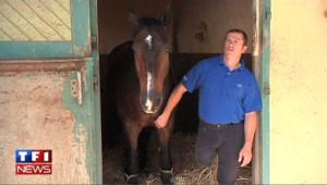 Rencontre avec Vladimir Vinchon, cavalier en lice pour les paralympiques