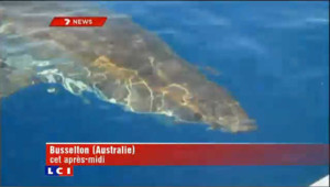 Un requin attaque un bateau de pêcheurs australiens