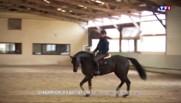Le quotidien chargé de Victor, lycéen de 17 ans et champion d'équitation