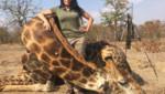 Une chasseuse américaine a déclenché un tollé sur le web. Sur sa page Facebook on peut la voir poser avec ses trophées : des animaux de la savane qu'elle a tués en Afrique du Sud.