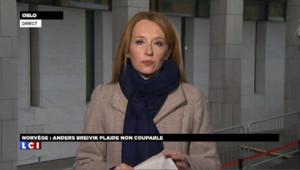 Ce que pourrait révéler le témoignage de Breivik