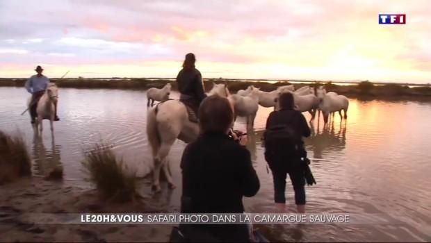 Camargue : des stages photo pour être au point pour les vacances