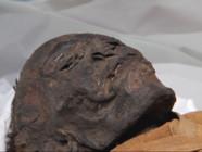 Le 13 heures du 28 février 2015 : Deux momies passées au scanner - 996.154