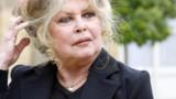 Brigitte Bardot : la polémique !