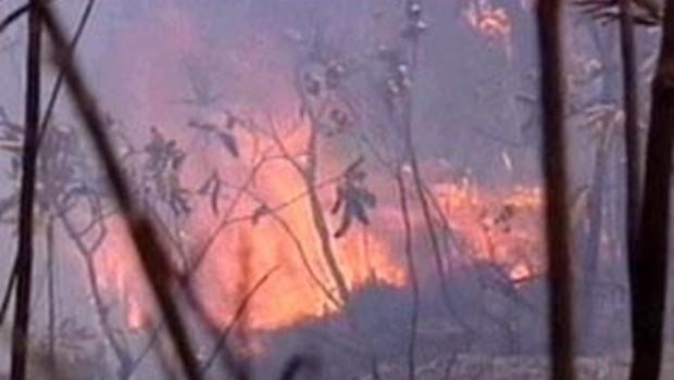 Incendies Nouvelle-calédonie Nouéma