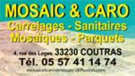 618- Mosaic et Caro- logo